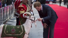 Harry meets goat