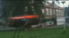Dead pet cat is turned into flying helicopter