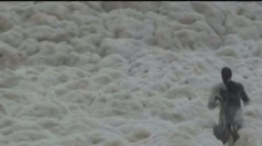 Five kilometres of natural foam hits the coast of Melbourne
