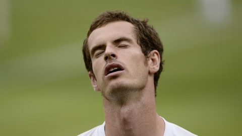 Murray couldn't hold back the tears after losing to Federer.