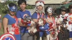 Superhero dog show in Philippines