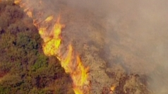 Wildfire erupts in Los Angeles