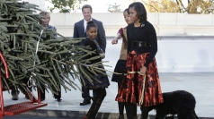 The first family inspect the White House tree.
