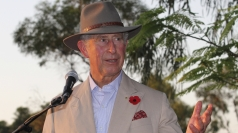 Charles urges action on environment