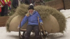 German thrill-seekers take part in sledging competition