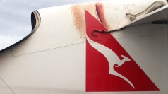 Snake on a Plane, seriously! Python clings to aircraft wing