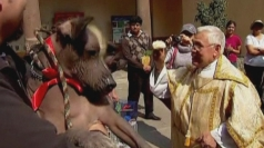Pets get blessed in Mexico