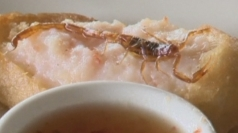 Fried scorpions on California restaurant menu