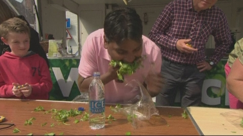 Watercress eating competition