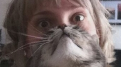 'Cat beards' internet craze goes viral