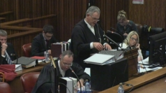 Pistorius 'fired gun through sunroof' when angry says ex